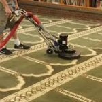 How To Avoid Mould Growth On Carpet